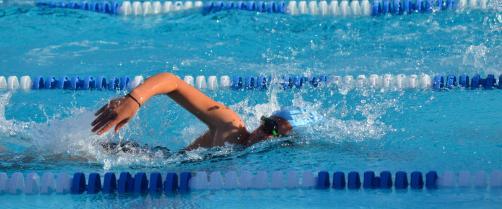 Trenažno plivanje PK SWIM WAY Beograd